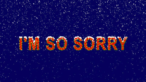 New Year text common expression I'M SO SORRY. Snow falls. Christmas mood, looped Animation