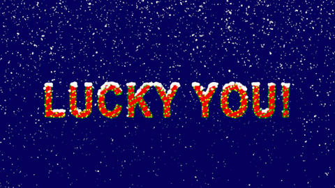 New Year text common expression LUCKY YOU!. Snow falls. Christmas mood, looped Animation