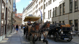 Horse cabs at the street of old town in Dresden, Germany Footage