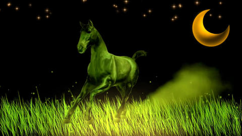 LONELY HORSE & MOONLIGHT Stock Video Footage