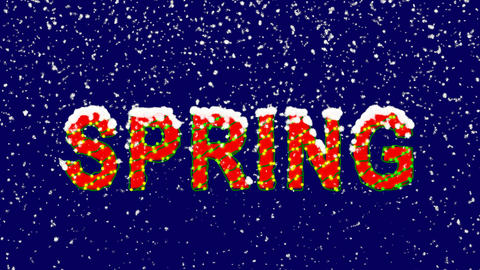 New Year text season name SPRING. Snow falls. Christmas mood, looped video. Animation