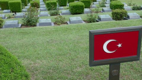 Turkish Soldier Grave In UN Memorial Cemetery In Korea Korean War stock footage