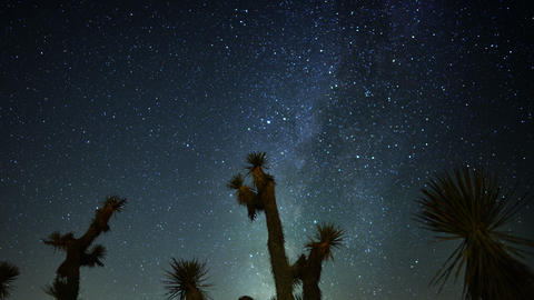 Draconids Meteor Shower 04 Dolly R Joshua Tree Milky Way Timelapse Live Action