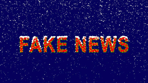 New Year text common expression FAKE NEWS. Snow falls. Christmas mood, looped Animation