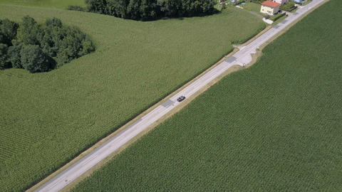Aerial footage of a black open car moving along the road between green fields Live Action