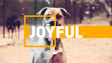 JOYFUL OPENER After Effects Template