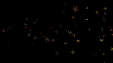 Flying Autumn Leaves Loopable Overlay Graphic Element V2 CG動画素材