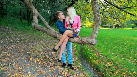 loving couple relaxing in autumn park Footage