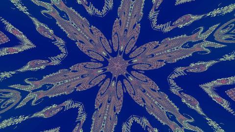 Pattern - a flower Stock Video Footage