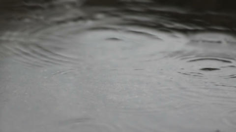 Rain drops dripping in a puddle 120 fps Footage