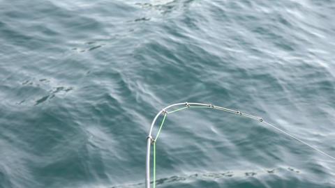 4K Fishing Rod strike rock fish - 海釣りアタリの瞬間 Footage