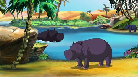 African Hippopotamus UHD stock footage