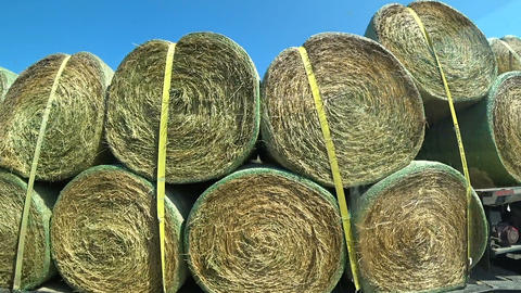 Transportation of rolls of hay on the truck Footage