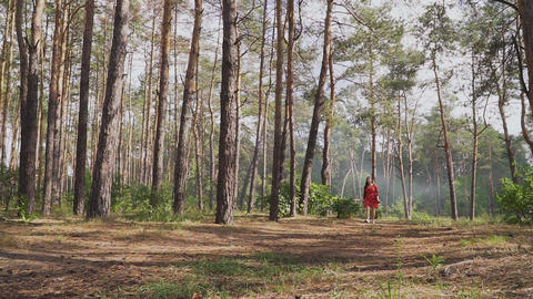 Young woman with bow walking in forest Live Action