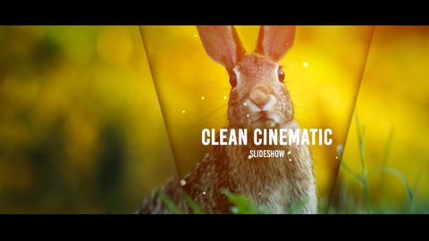 Clean Cinematic Slideshow After Effects Template