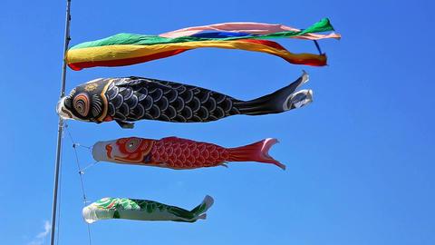 Carp kite flying (koinobori) Footage