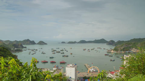 Cat Ba town day timelapse zoom out 4K Footage