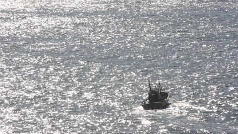 漁船のシルエット ライブ動画