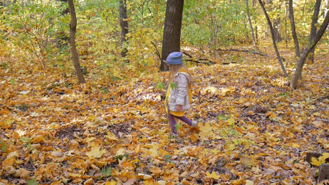 A little cute little girl walks in the park in the fall Footage