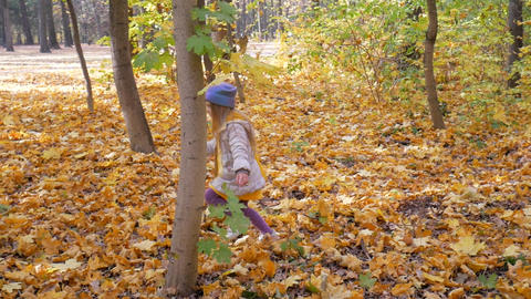 A little cute little girl walks in the park in the fall, Live Action