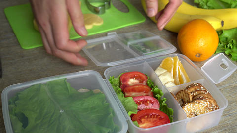 Lunch Box For Kids And Adults Live Action