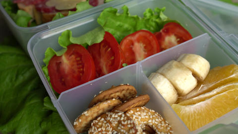 School Lunch Box For Kids Live Action