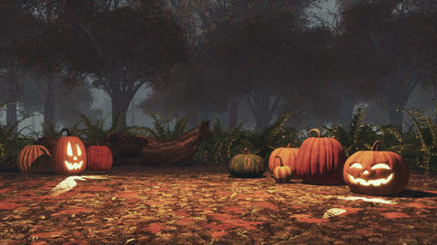 Halloween pumpkins in misty autumn forest at dusk Footage