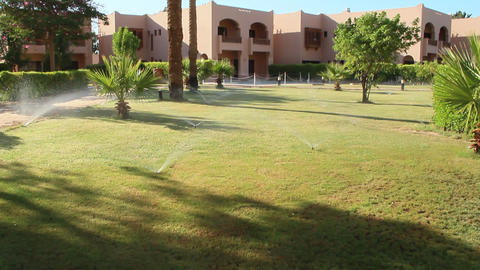Grassy lawn among palm trees at resort in Egypt. Hotel with well-groomed 영상물