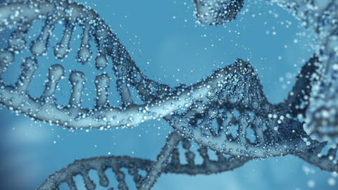 Looped Deoxyribonucleic acid (DNA) chains Animation