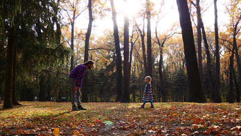 Dad and daughter are playing in the autumn forest. Preparation and play Footage