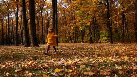 child playing in autumn Park. Fall foliage. outdoor fun in autumn Footage