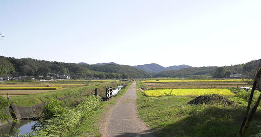 Countryside of Japan Footage