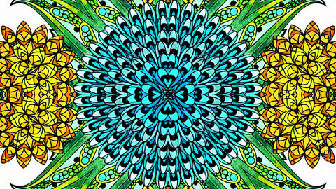 Mandala Flouer Kaleidoscopic loop animation Animation