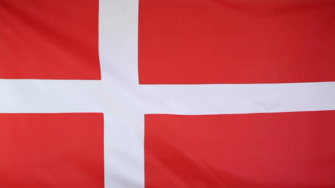 Fabric national flag of Denmark Footage