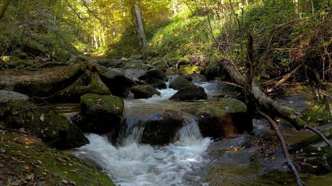 Mountain stream in autumn morning Footage
