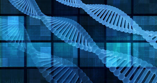Genetic Research and Development with Looping Science Data Live Action