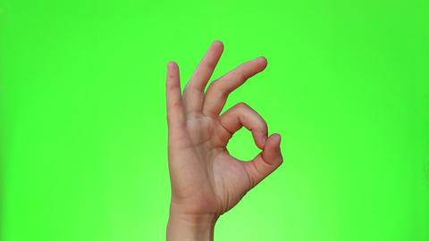 Ok Gesture Live Action
