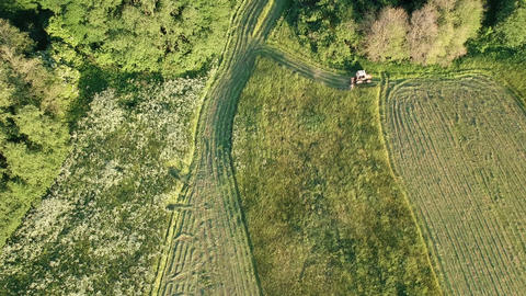 Agriculture tractor cut harvesting summer hay on meadow, aerial view Footage