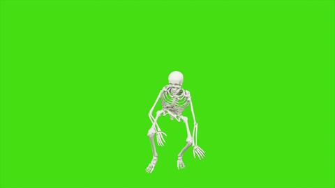 [alt video] Skeleton dancing. Animation on green screen