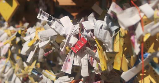 Many oracles at Asakusa shrine close shot Footage