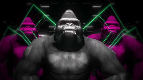 Tree Colorful Gorilla Brothers With Ultraviolet Flashing Energy Loop LIMEART Live Action