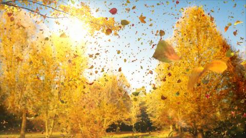 Magical Autumn - 4k Poetic Autumn Impression Video Background Loop Animación