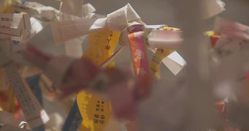 Pink oracle at Asakusa shrine close shot back rack focus Live Action