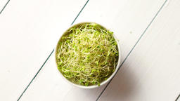 Bowl full of fresh radish sprouts placed on white wooden background Footage