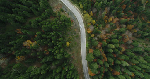 4k aerial view of car driving down a road through autumn forest ビデオ