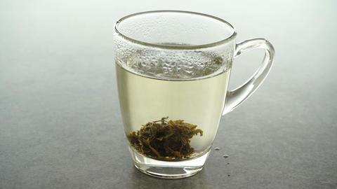 Brewing Jasmine tea cube Live Action