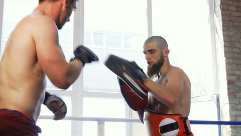 Rear view shot of a strong muscular mma fighter training with the padman Archivo