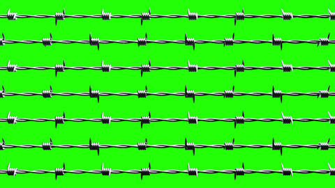 Barbwire on green chroma key Animation