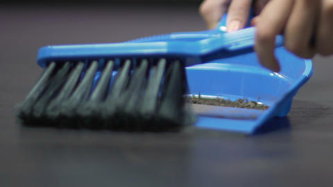 Close-up female hands with brush sweeping rubbish from floor on scoop, cleaning Footage