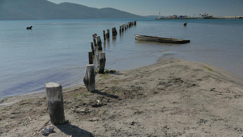 Old wooden berth stumps into the sandy sea floor with new port on the background Live Action